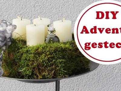 Utes Adventsgesteck aus Moos aus dem Garten | DIY | Weihnachtsdeko