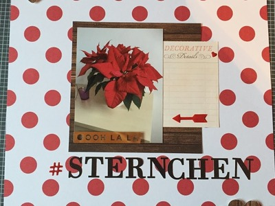 Scrapbooking Process:001-Sternchen