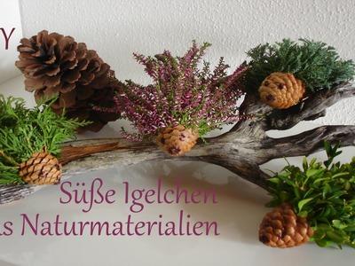 DIY: Herbstdeko | Kleine Igelchen aus Naturmaterialien | Basteln mit Kindern | Just Deko