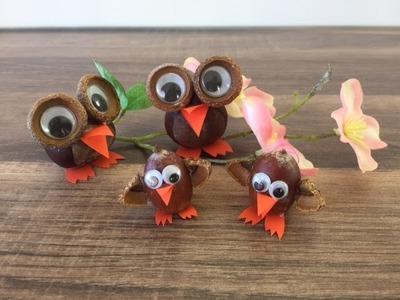 DIY Vögel basteln aus Naturmaterialien, Basteln mit und für Kinder, Eule