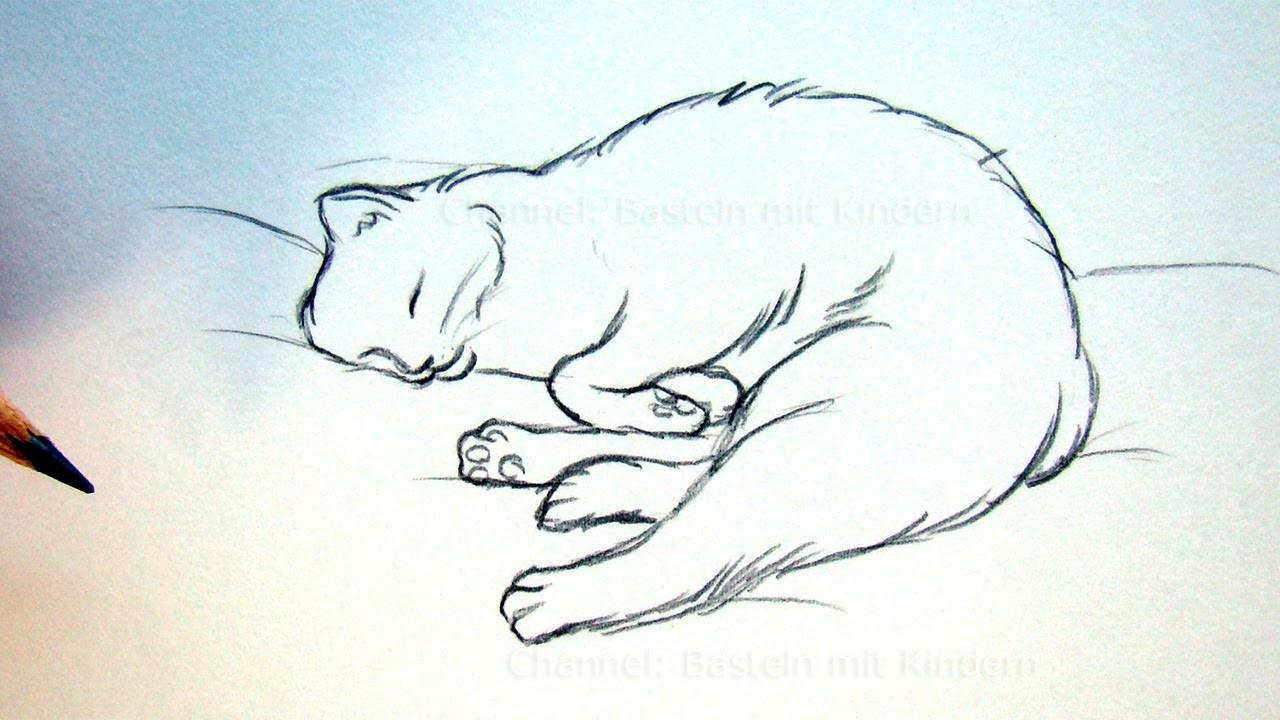 katze zeichnen lernen tiere zeichnen und malen. Black Bedroom Furniture Sets. Home Design Ideas