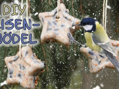 Meisenknödel selber machen | DIY Winterfutter | Vogelfutter selber machen