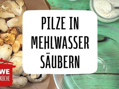 Pilze in Mehlwasser säubern #DIY