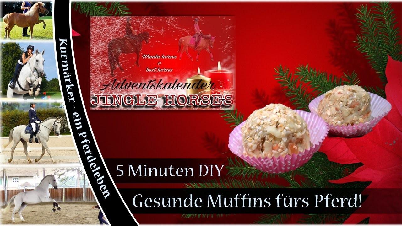 [5 Minuten DIY] Gesunde Muffins für dein Pferd! ♥