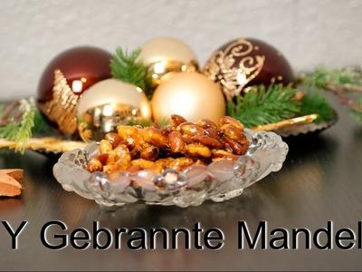 DIY Gebrannte Mandeln | Nessa
