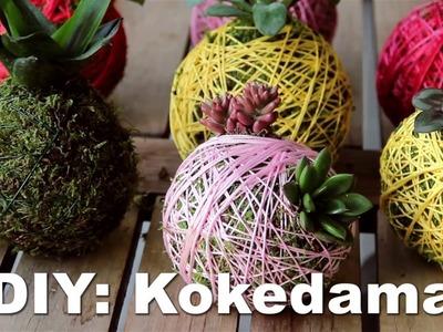 DIY: Kokedama - GartenXXL