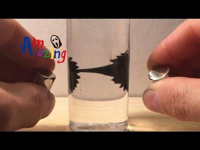 Ferrofluid in der Flasche - DIY