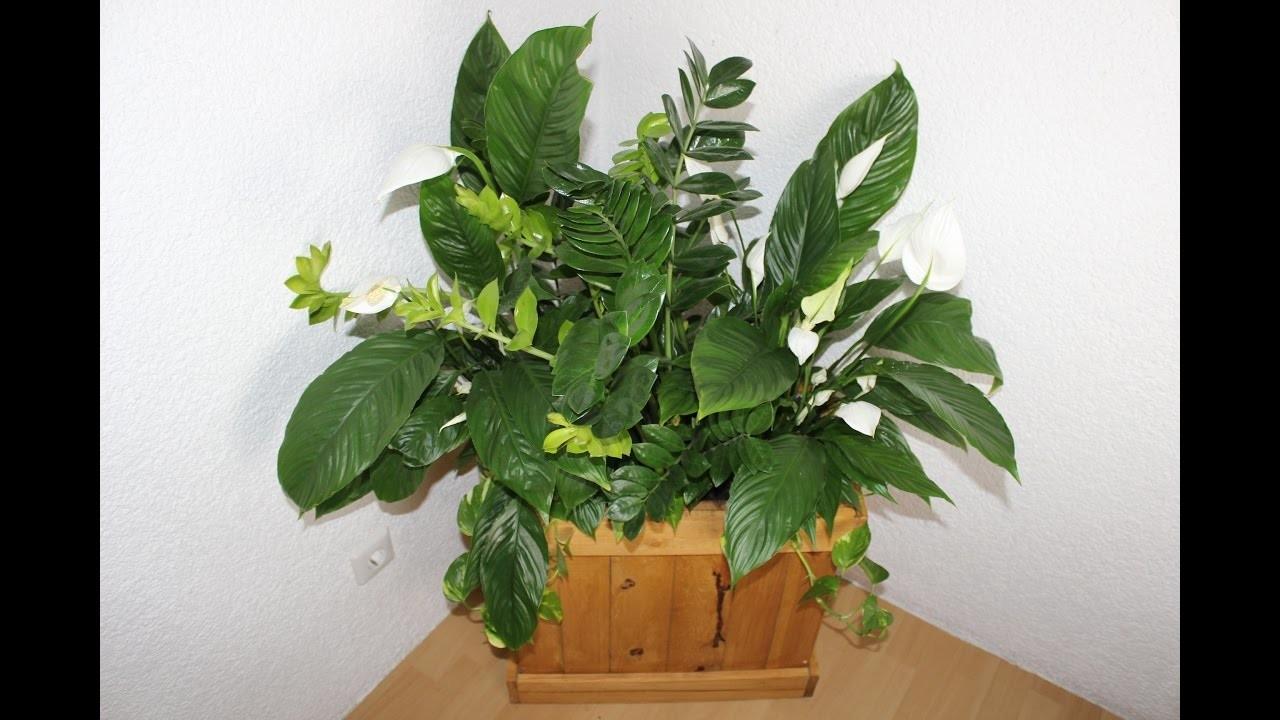 Diyselbstgemachter Blumenkasten Aus Palettenholz
