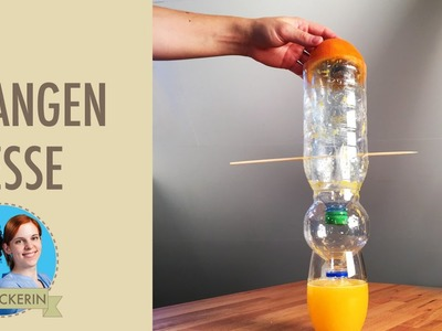 Orangen frisch pressen - mit Plastikflaschen I DIY-Zitruspresse I Upcycling