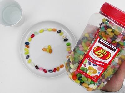 DIY JELLY BELLY REGENBOGEN Experiment | Funktioniert das Experiment auch mit anderen Süßigkeiten?