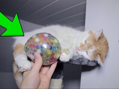 Aus Aqualinos.Orbeez Antistressball selber machen - DiY ????????