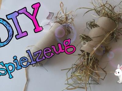 DIY Kaninchenspielzeug - Beschäftigungsideen für deine Kaninchen!. Kaninchenstar