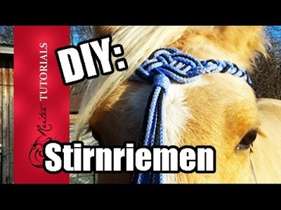 DIY: Celtic Stirnriemen aus PP-Seil selber machen! Keltischer Knoten . Reitertutorials