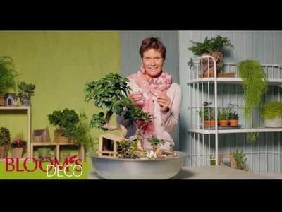 DIY-Accessoires für Miniaturgärten