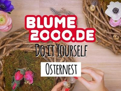 DIY | Blumiges Osternest | Blume2000.de